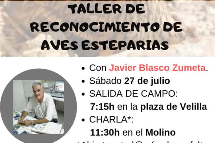 Taller reconocimiento aves